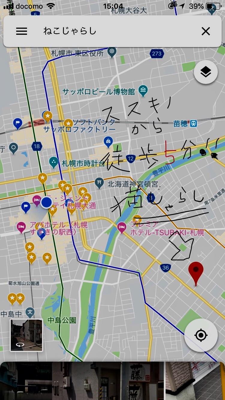 札幌,ライダーハウス,猫じゃらし