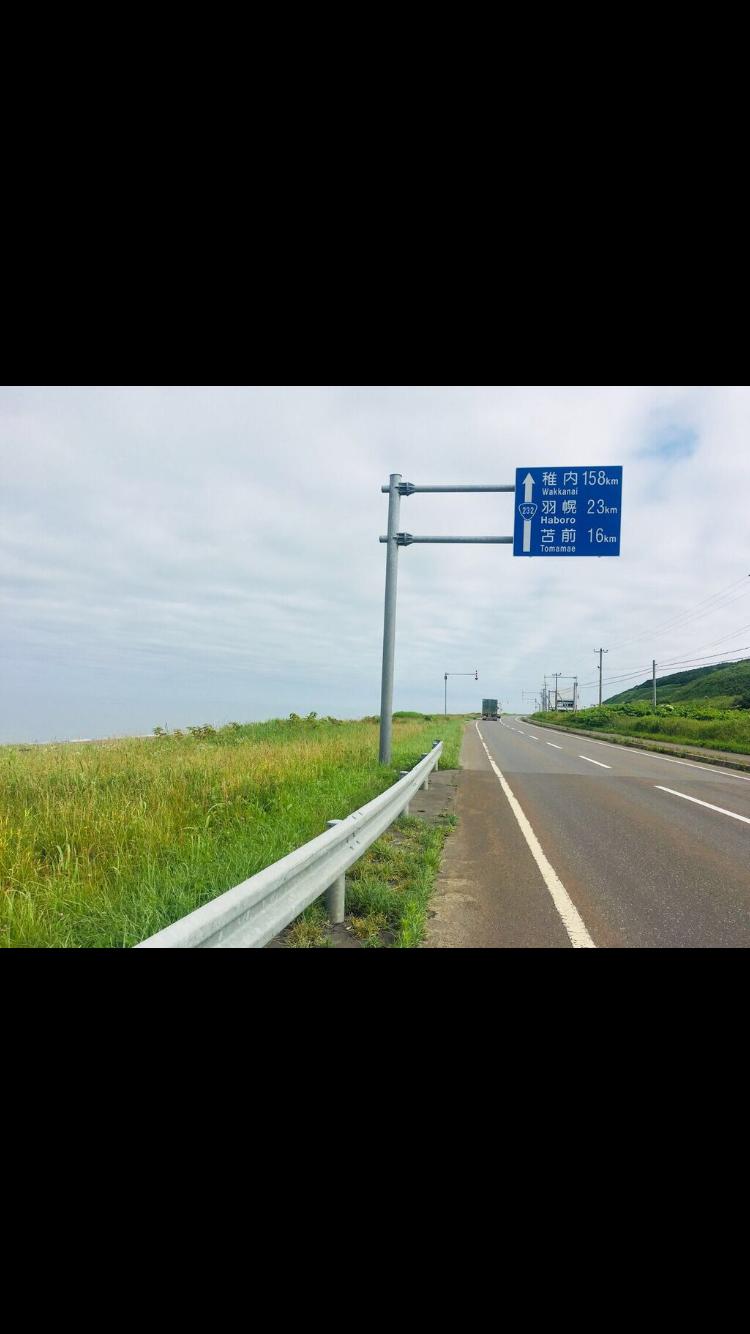 北海道, 自転車旅, チャリダー, 日焼け, 地平線, 花