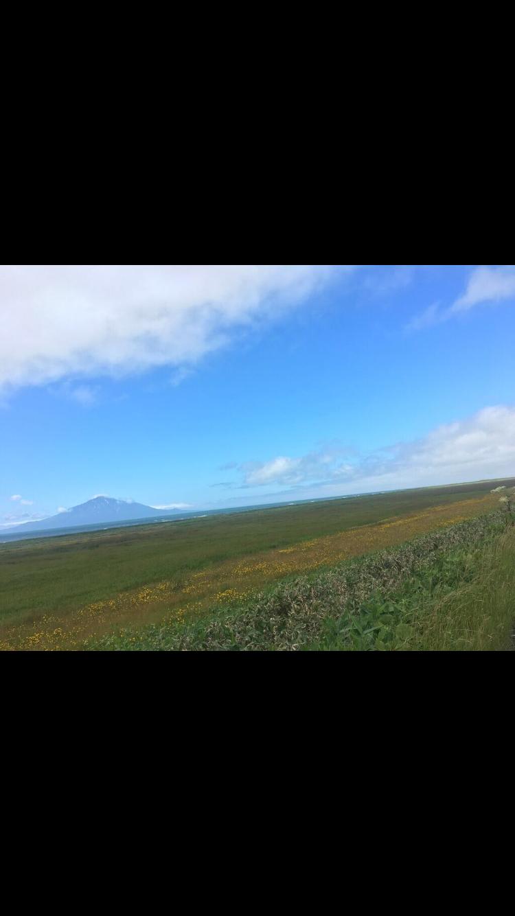 自転車旅, オロロン街道, 北海道, チャリダー, 地平線, 利尻島, 礼文島, 野生鹿