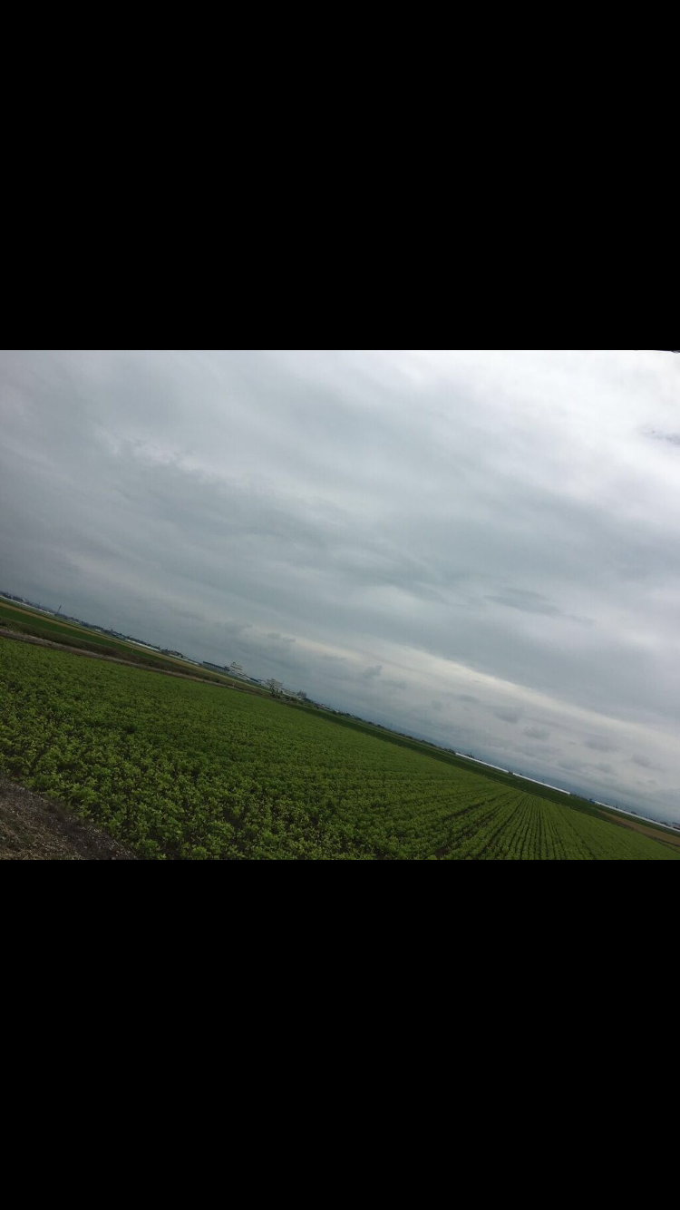 北海道旭川大自然と畑